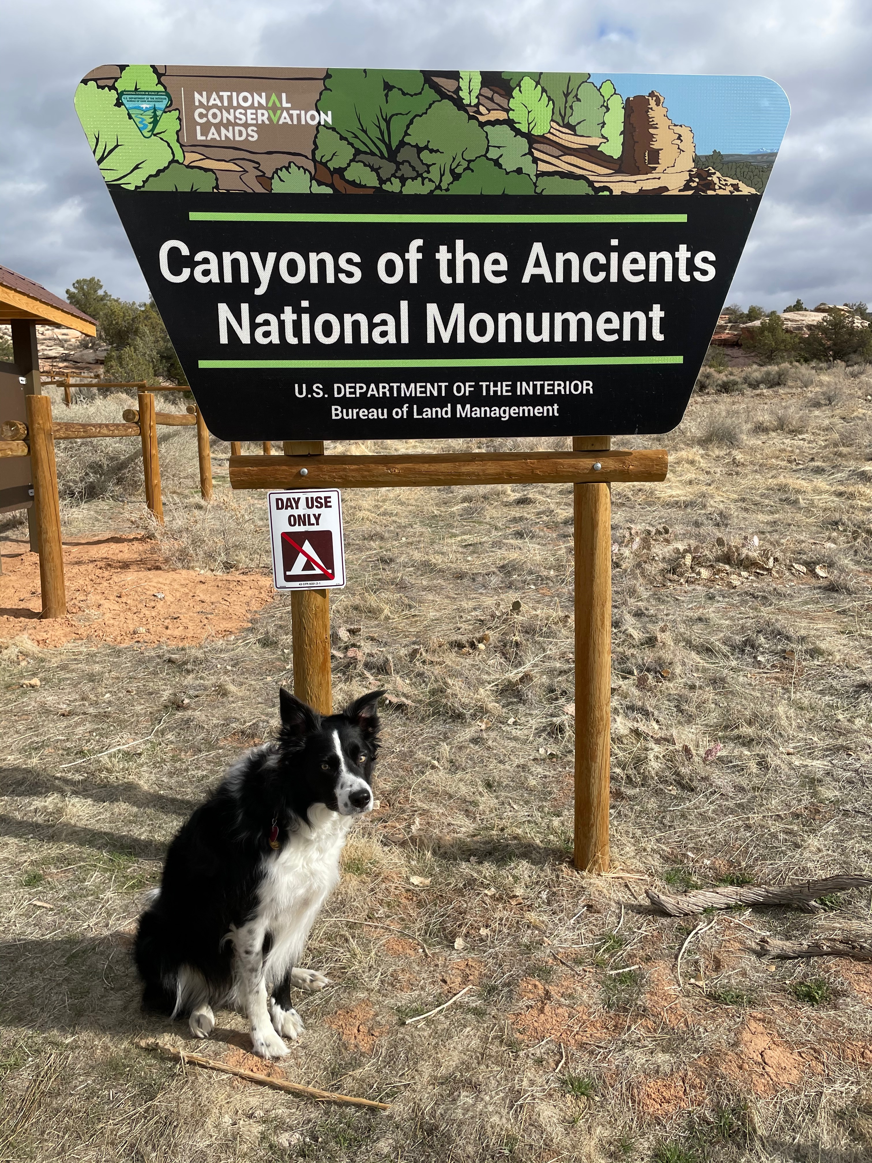 Canyons of the Ancients National Monument felt like a hidden gem. I've been to Mesa Verde before, which is cool, but it's always crowded. There was almost nobody at this monument.