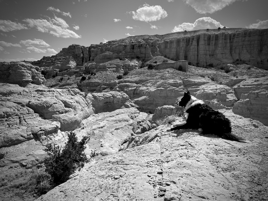 Skutull looking out over his domain like Simba after we made it to the top/end.
